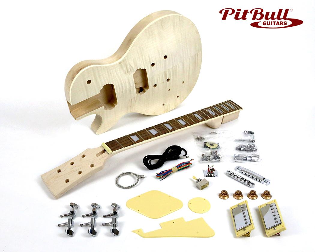 lp guitar kit. Black Bedroom Furniture Sets. Home Design Ideas