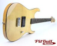 PBG-X1-FN 01