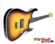 PBG-X1-TB 01
